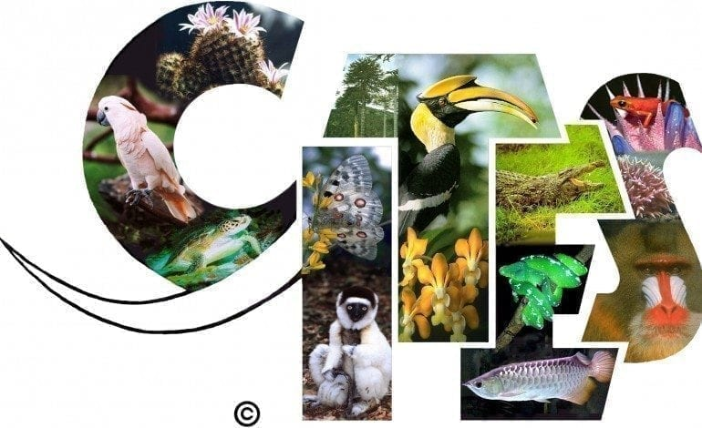 The Convention on International Trade in Endangered Species of Wild Fauna and Flora (CITES)