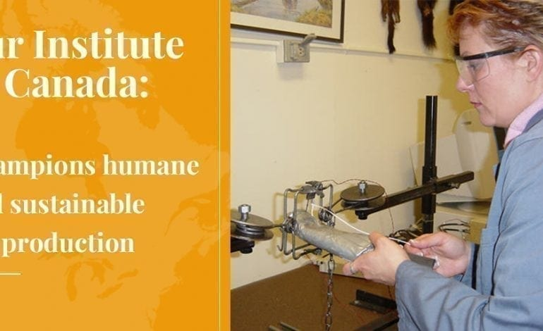 Fur Institute of Canada Champions Humane and Sustainable Fur Production - Truth About Fur Blog Highlight