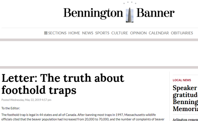 Letter: The truth about foothold traps - Bennington Banner