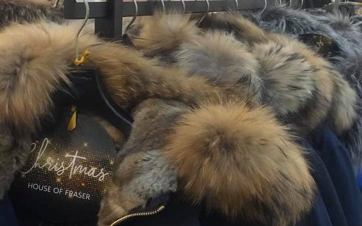 Mike Ashley accused of overturning a fur ban at House of Fraser – The Telegraph