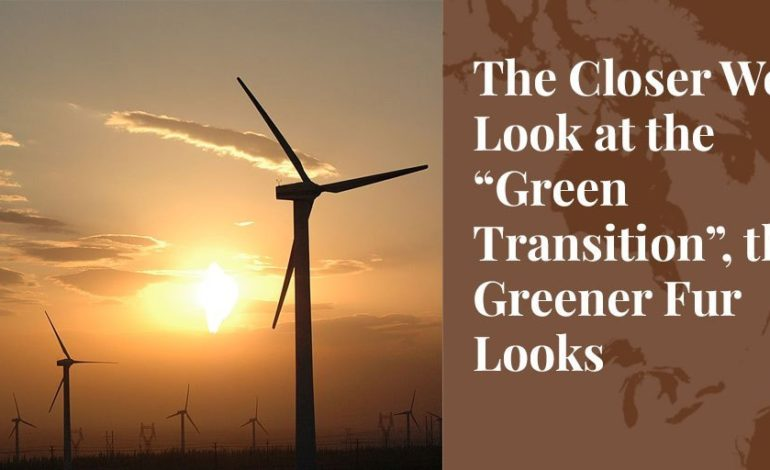 """The Closer We Look at the """"Green Transition"""", the Greener Fur Looks - Truth About Fur Blog Highlight"""