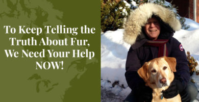 To Keep Telling the Truth About Fur, We Need Your Help NOW! - Truth About Fur Blog Highlight
