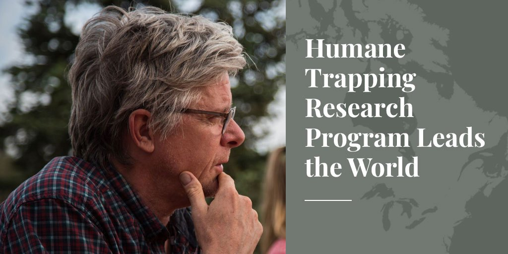 Humane Trapping Research Program Leads the World – Truth About Fur Blog Highlight