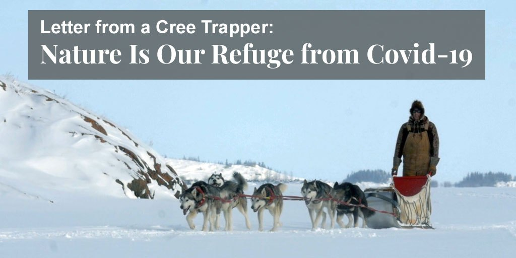 Letter from a Cree Trapper: Nature Is Our Refuge from Covid-19 – Truth About Fur Blog Highlight