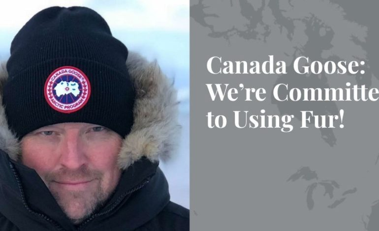 Canada Goose: We're Committed to Using Fur! – Truth About Fur Blog Highlight