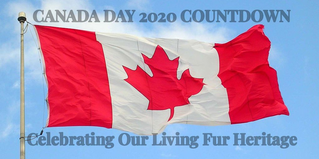Canada Day 2020 Countdown: Celebrating Our Living Fur Heritage – Truth About Fur Blog Highlight