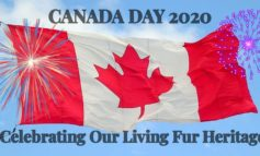In Case you Missed it - Truth About Fur Canada Day Campaign - #UnitedbyFur