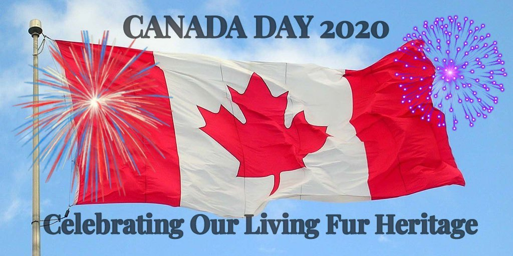 In Case you Missed it – Truth About Fur Canada Day Campaign – #UnitedbyFur