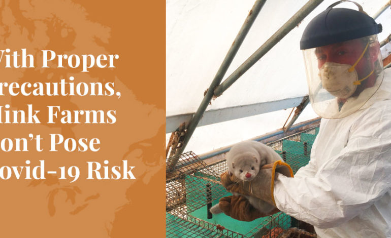Truth About Fur Blog Highlight - With Proper Precautions, Mink Farms Don't Pose Covid-19 Risk