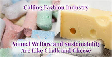 Animal Welfare and Sustainability Are Like Chalk and Cheese